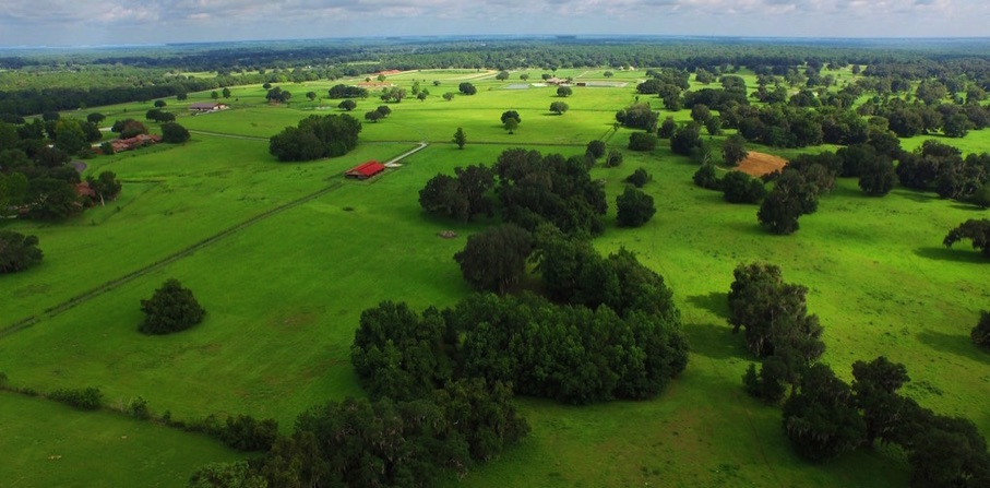 The cross-country courses wind over the miles of rolling hills of the farm, through the oak tree-studded parkland setting. Photo courtesy of Ocala Jockey Club.