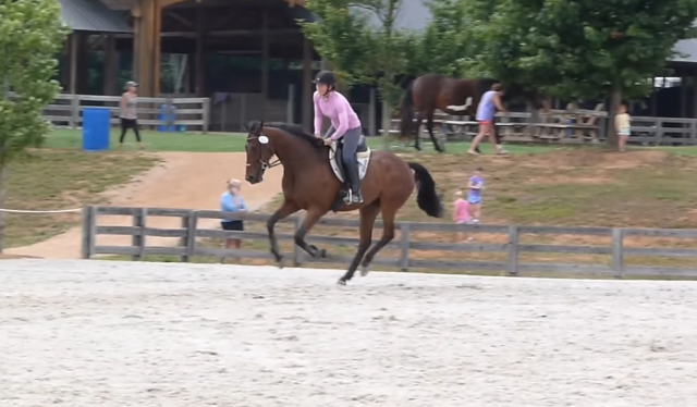 Henri and Elisa competing at a schooling event earlier in the year. Screenshot via YouTube.