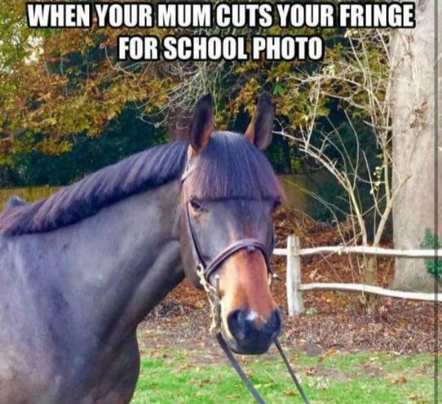 Photo via HorseSmart UK Facebook Page.