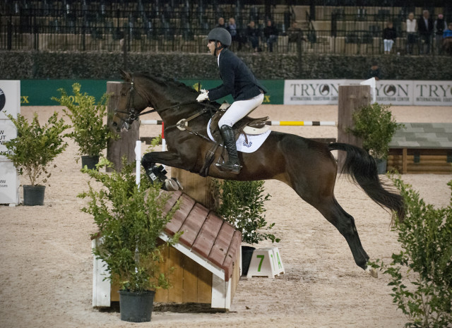 Andrew Palmer and Anissa Cottongim's Trakehner stallion Tatendrang in the $5,000 jumping derby at TIEC. Photo by Leslie Threlkeld.