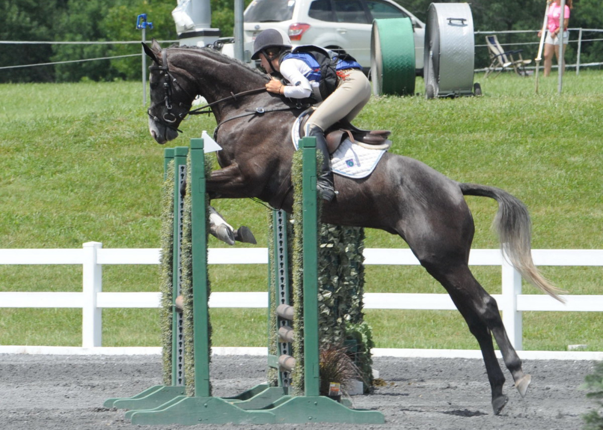 Leslie Wylie | Eventing Nation - Three-Day Eventing News, Results