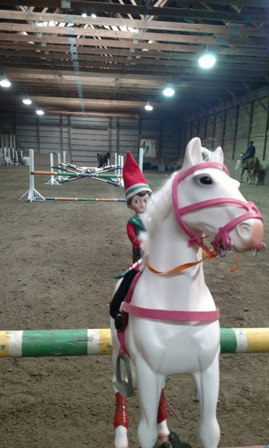 Jack the Elf has this grid thing down. Photo via Destination Farm FB page.