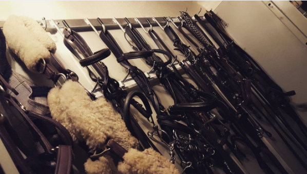 All the hooks for all the tack. Photo by Maggie Deatrick.