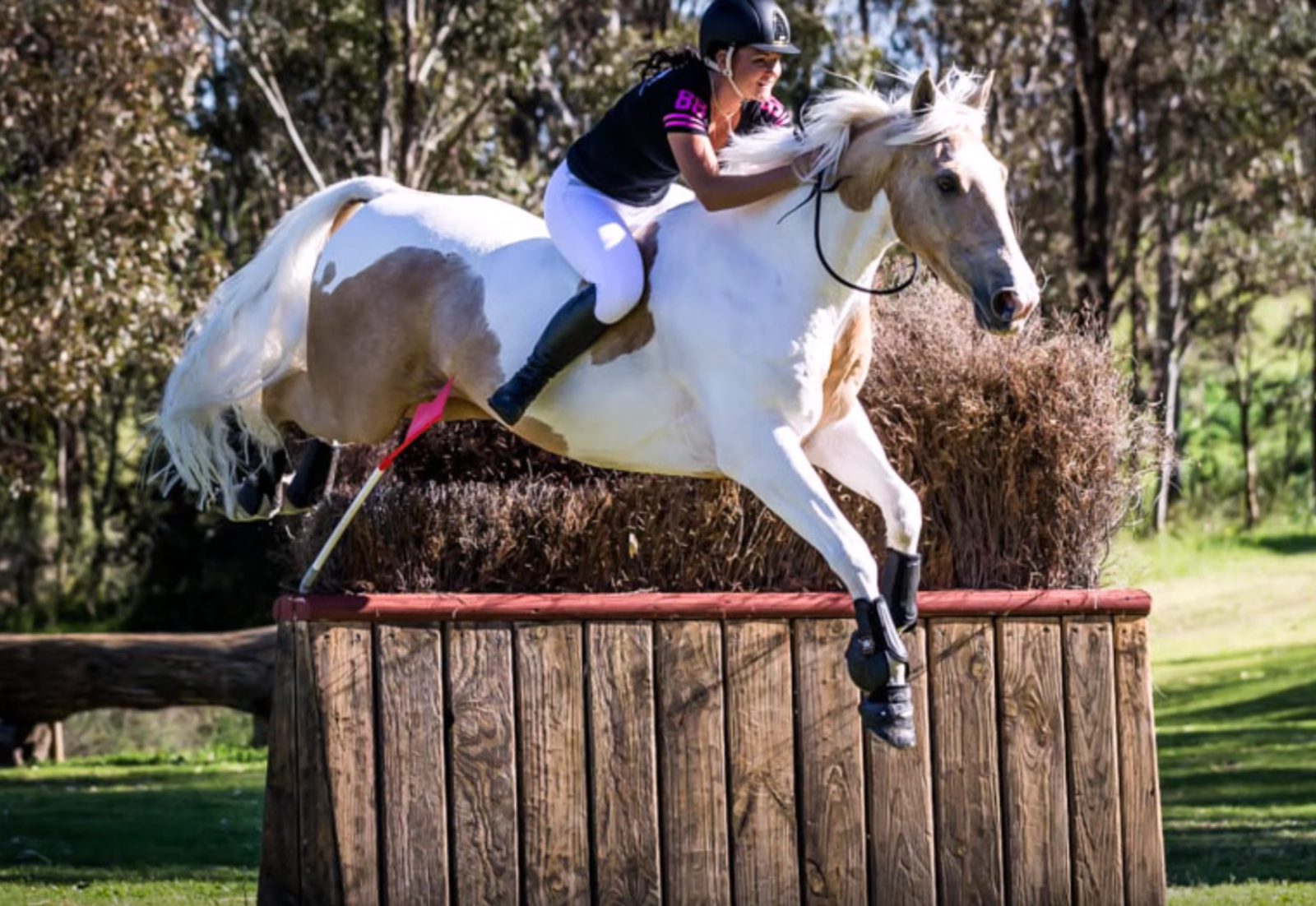 friday video from world equestrian brands extreme cross