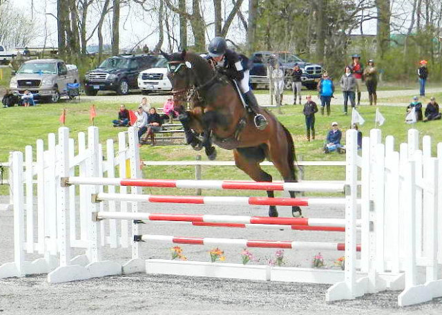 Perfect balance! What we are all seeking in eventing. Photo courtesy of Holly Covey.