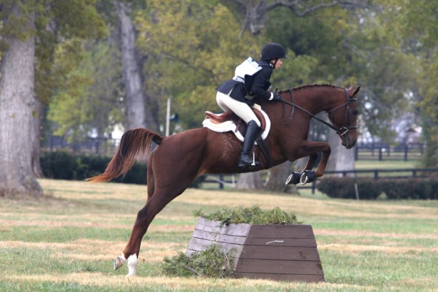 Lindsay Gilbert, shown here competing Rebel Annie in the 2016 Thoroughbred Makeover, has a 2017 entry as well! You can follow the journey of Lindsay and her new OTTB, Hot Java, via their