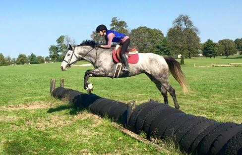Sudden Danger proving she'd rather lope around a hunter ring than gallop over a cross country course. (She's a great sport, though!) Photo courtesy of Lindsay Gilbert.