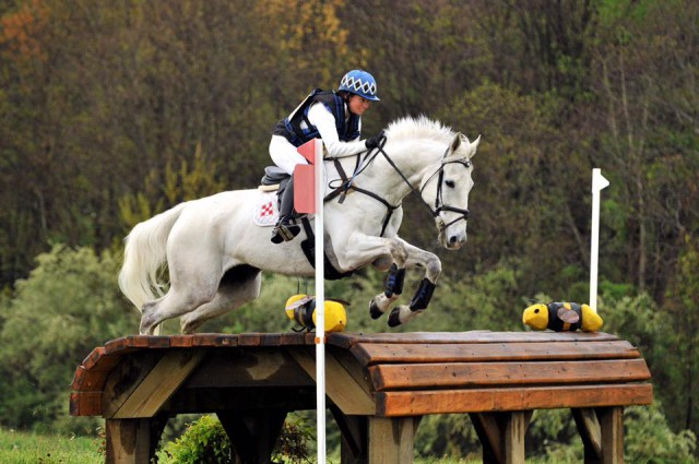 Photo courtesy of Kate Chadderton via Sport Horse Nation.