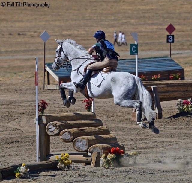 The Green Machine. Photo courtesy of Katrina Young via Sport Horse Nation.