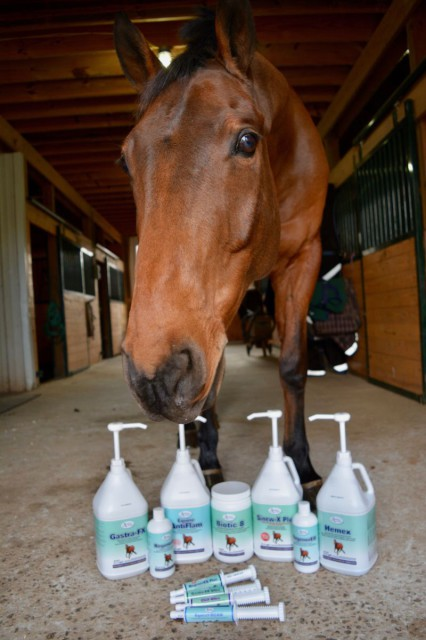 "All Omega Alpha products reviewed on Eventing Nation have been Nyls certified ""tasty"". Photo by Kate Samuels."