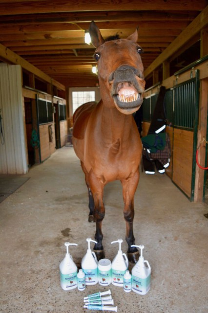 All Omega Alpha products reviewed for Eventing Nation come with the Nyls stamp of tasty approval. Photo by Kate Samuels.