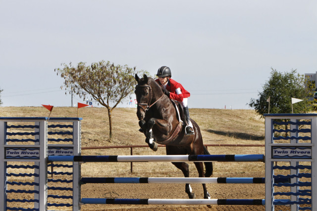 SVR Ron. Photo courtesy of Gina Miles via Sport Horse Nation.
