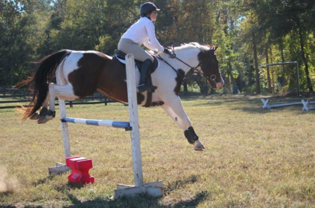 Team member Catherine Denaux and her mare Hope at the Bonnie Mosser Clinic. Photo courtesy of Clemson Eventing Team.