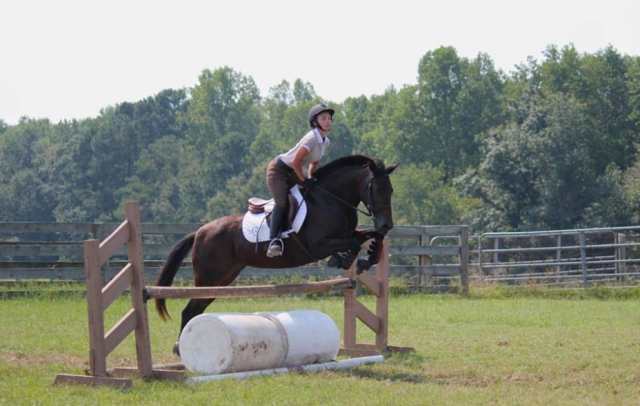Team member April Crawford and her mare Lucy tackling one of the show jumping exercises at the Allison Springer Clinic. Photo courtesy of Clemson Eventing Team.