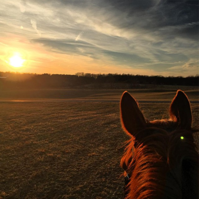 Virginia sunsets are tough to beat. Photo courtesy of Ellyn McMahon.