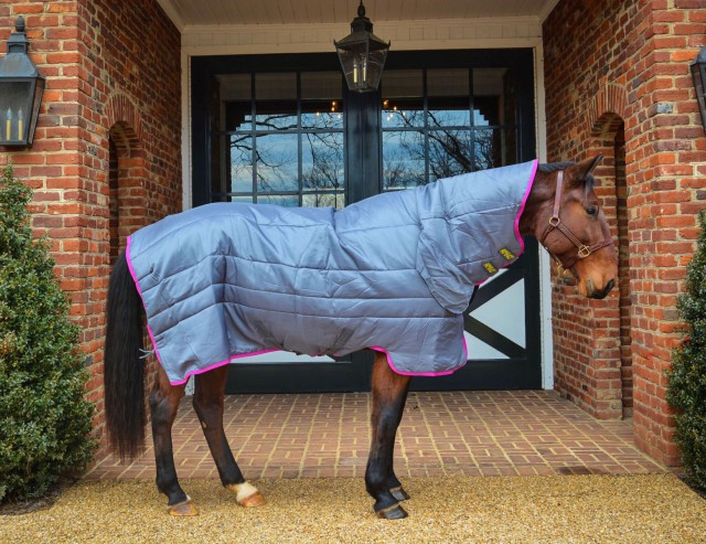 "Off track Standardbred ""McBoogie"" modeling the Amigo All-In-One Insulator Stable Blanket. Photo by Erica Stevens."