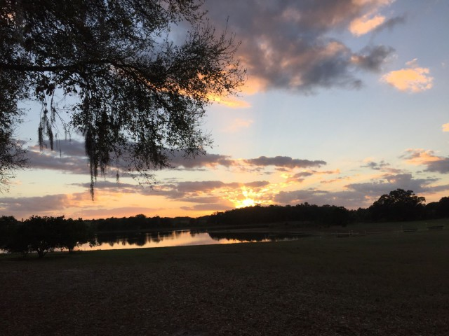 Sunset at Three Lakes HT in Groveland, FL. Photo by Hilda Donahue