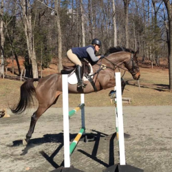 What S In Your Ring With Huxley Greer Presented By