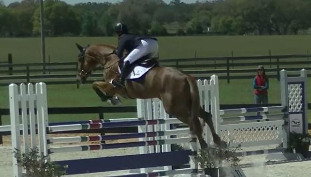 Screenshot via The Horse Pesterer on YouTube.
