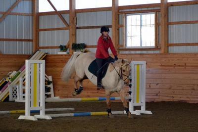 Palomino horse landing.jpg