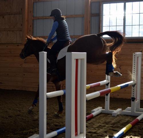 chestnut horse landing oxer.jpg