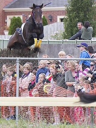 665898-warrnambool-banna-strand-horse-crowd.jpg