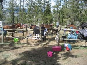 Camping-Johvale-300x225.jpg