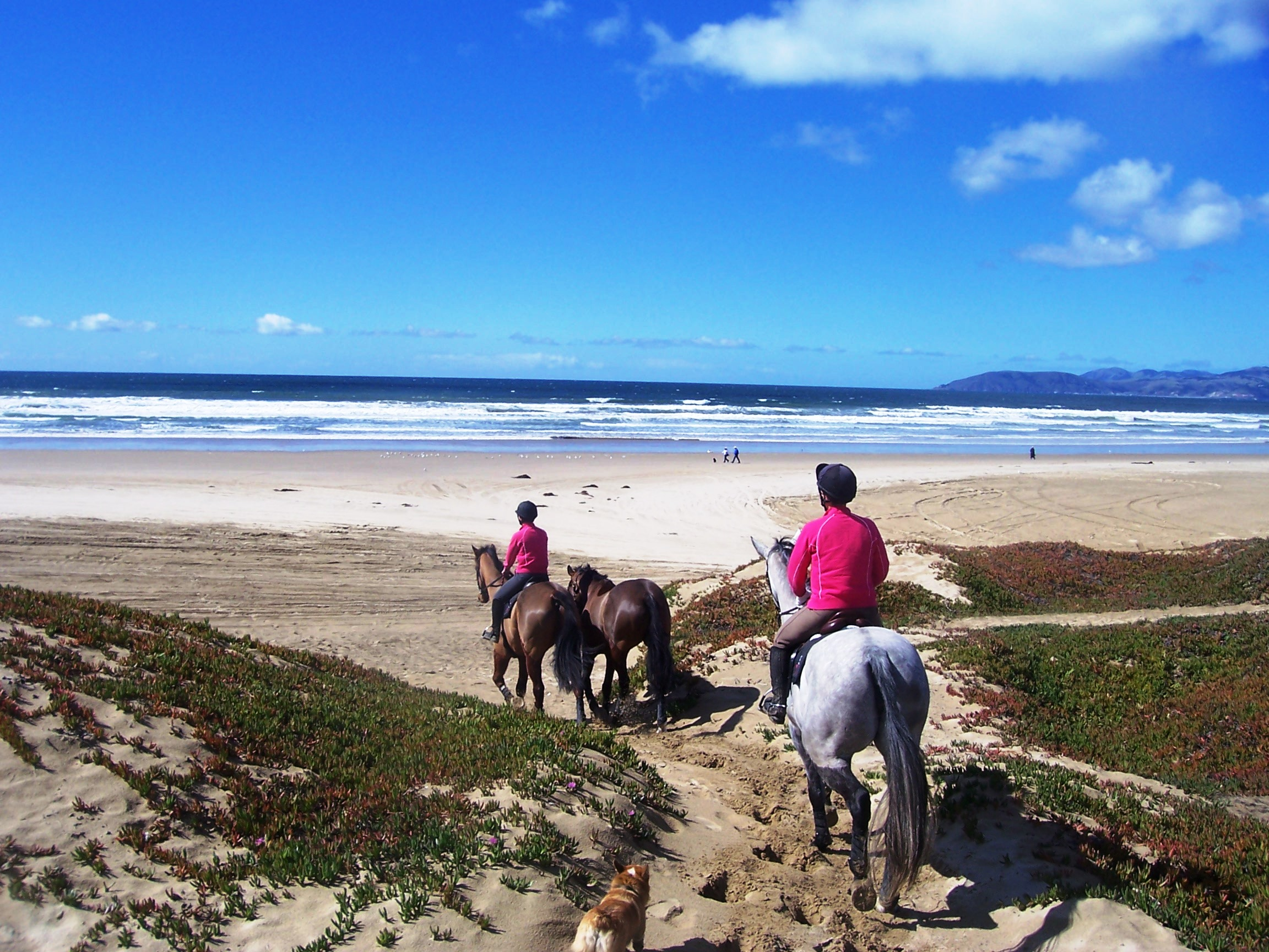 Pismo Beach Horse Riding The Best Beaches In World