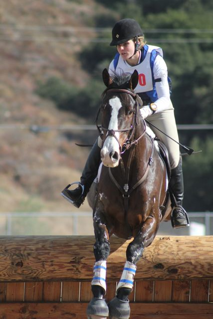 Galway Downs Cci Cross Country Wrap Up Eventing