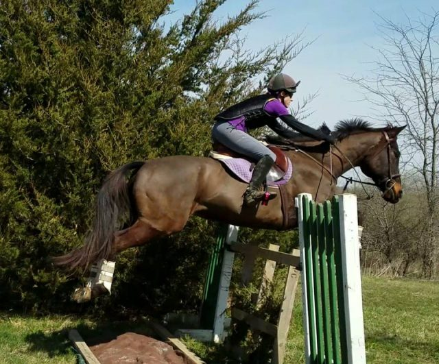 7 Ideas For Building Your Own Diy Cross Country Jumps On The