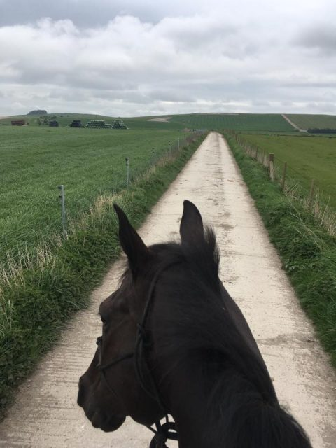 Just a casual bareback and hack on a 4* eventer through the English countryside! Photo via Elisa Wallace on Facebook.