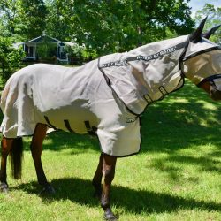 The Horseware Rambo Fly Buster Vamoose keeps your horse fly-free from every angle. Photo by Kate Samuels.