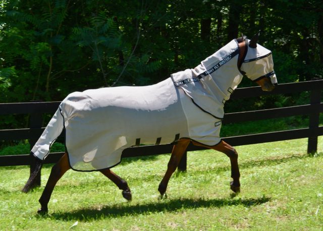 2011 Gallop All in One Horse Pony Fixed Neck Fly Rug Free Mask