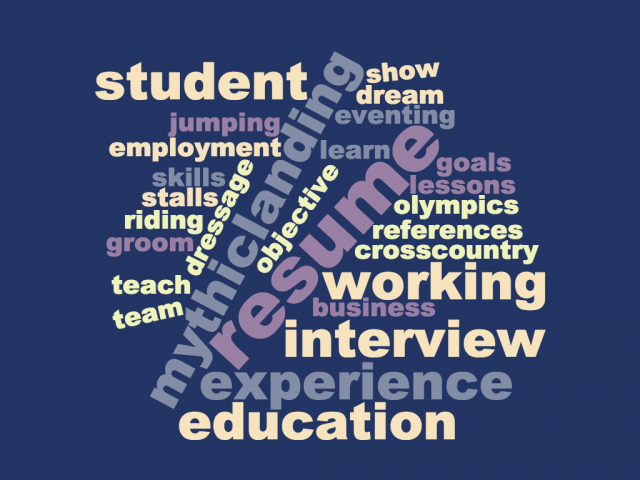 dos and don ts of writing an equestrian resume contest for job