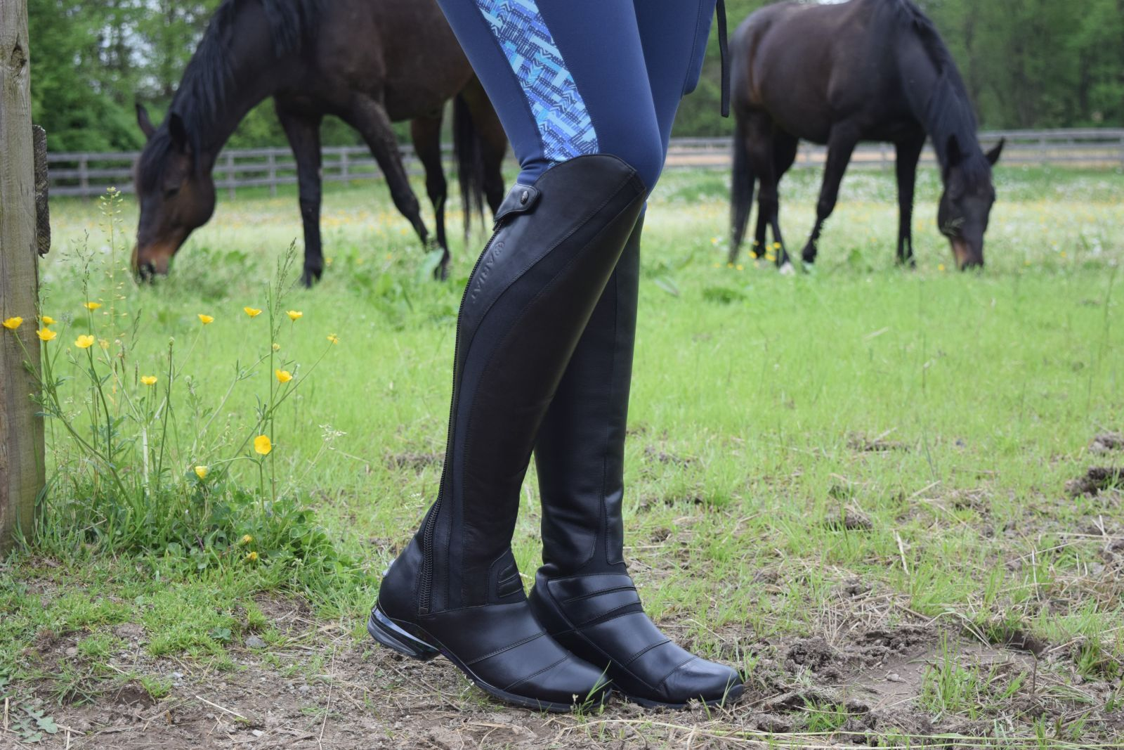 a3129aa5228a Product Review: Ariat Vortex Tall Boots   Eventing Nation - Three ...