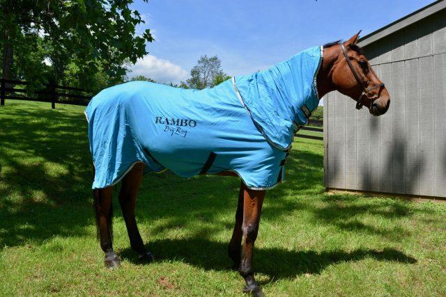 Horseware Ireland Rambo Dry Rug Supreme