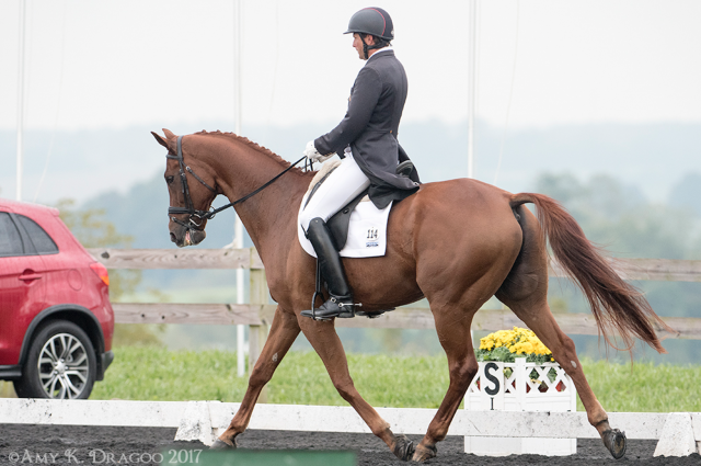 Boyd Martin Delivers Career Best FEI Dressage Score at