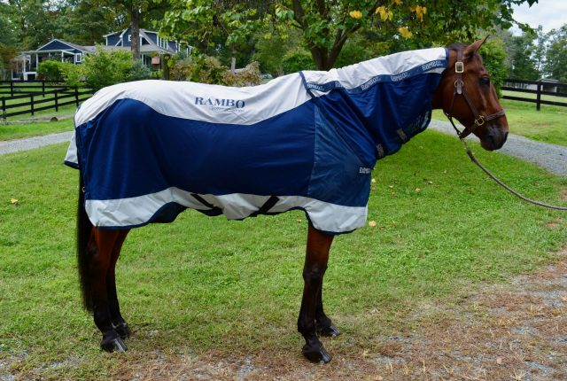 Don T Let The Le Fool You This Is Perfect Turnout Sheet For Awkward Fall Weather Rambo Summer Series Ultimate Blanket To Use