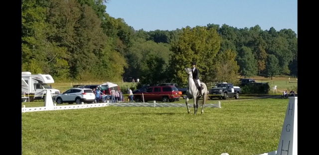 Amy Nelson & Hummingbird's River - Dunnabeck Horse Trials 2017