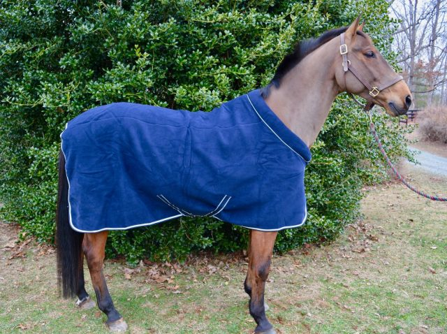 Product Review Horseware Ireland Rambo Cozy Fleece