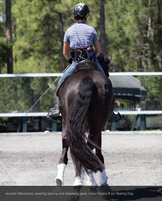 EQ Saddle Science used technology to test the impact their saddles had on horses. Photo courtesy of EQSaddleScience.com