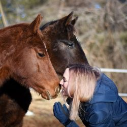 Baby horse cuddles! Photo by Shelby Allen.