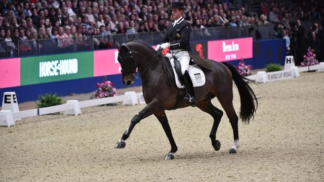 Carl Hester riding Nip Tuck, winner of the FEI World Cup Dressage Grand Prix Freestyle at Olympia in 2016. Photo by FEI/Kit Houghton.