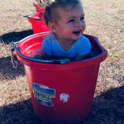 The best pool is a pint-sized pool. Photo via Andrea Davidson Eventing FB page.