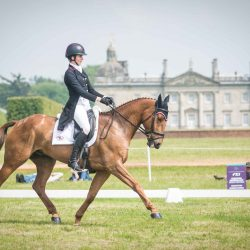 Caroline Martin and Danger Mouse post a 33 in the CICO3*. Photo by Tilly Berendt.