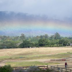 Rainbows over the Horse Park at Woodside. Photo by Shelby Allen.