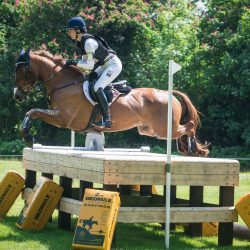 Caroline Martin and Danger Mouse record a double clear to climb from 44th place to 17th. Photo by Tilly Berendt.