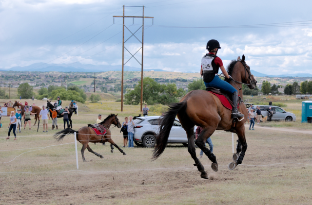 Leslie Wylie | Eventing Nation - Three-Day Eventing News