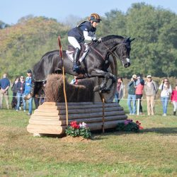 The child prodigy in action: Liz Halliday-Sharp and Cooley Moonshine. Photo by EquusPix.