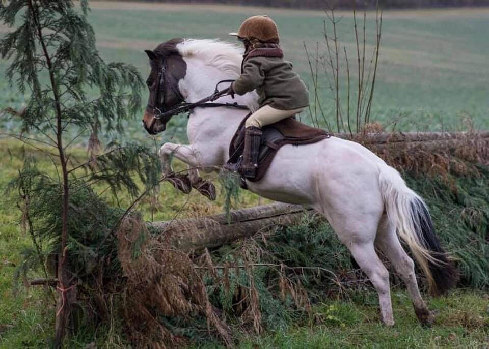 f27f881b9 Thursday Video from SmartPak  These Fox Hunting Toddlers Know No Fear